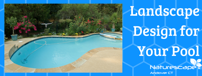 landscape design for your pool