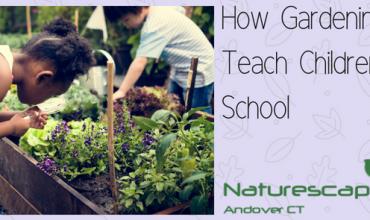 How Gardening can teach children at school