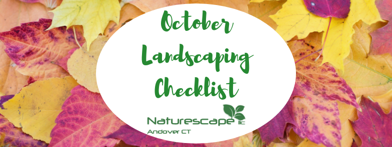 October landscaping checklist