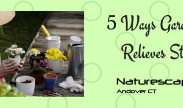 5 Ways Gardening Relieves Stress