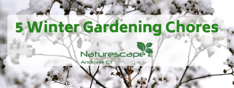 winter gardening chores