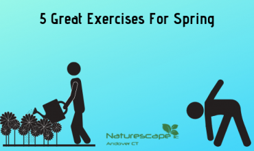 5 great exercises for spring